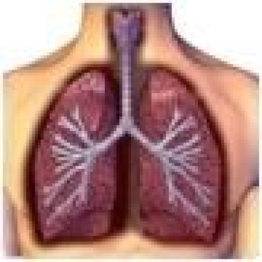 Lung-disorders